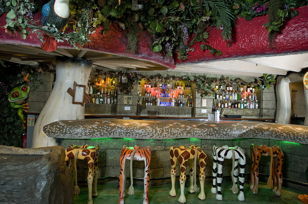 Image of The Rainforest Cafe