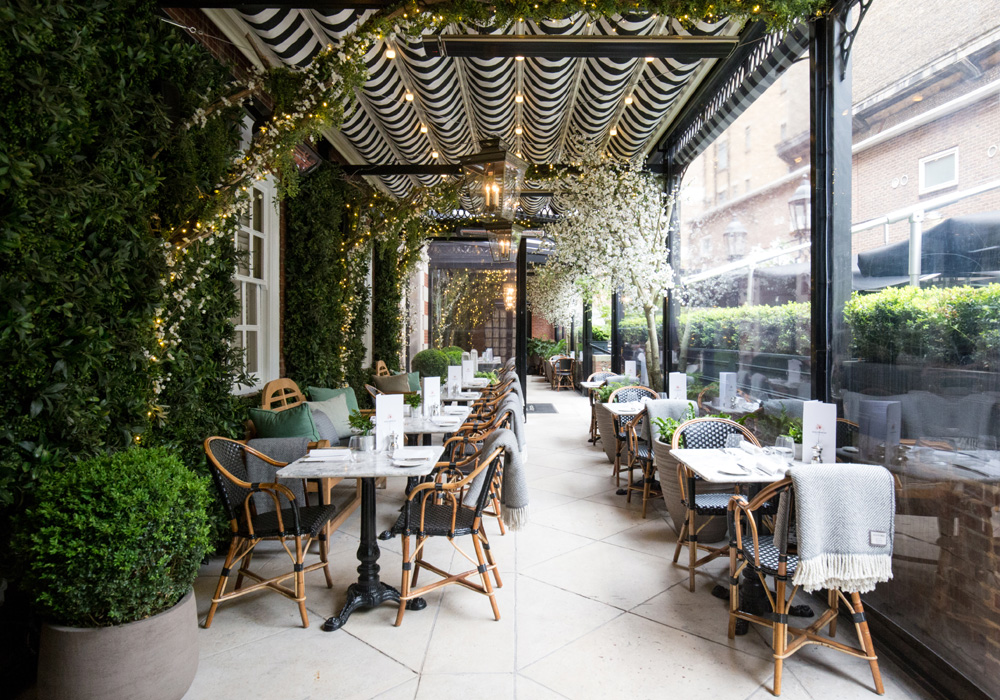 Dalloway Terrace - London