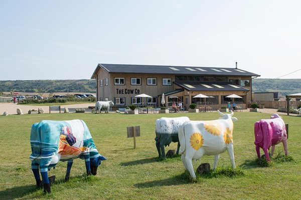 The Cow Co - Isle of Wight