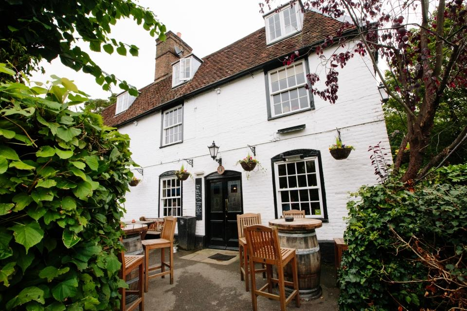 The Dolphin - Surrey
