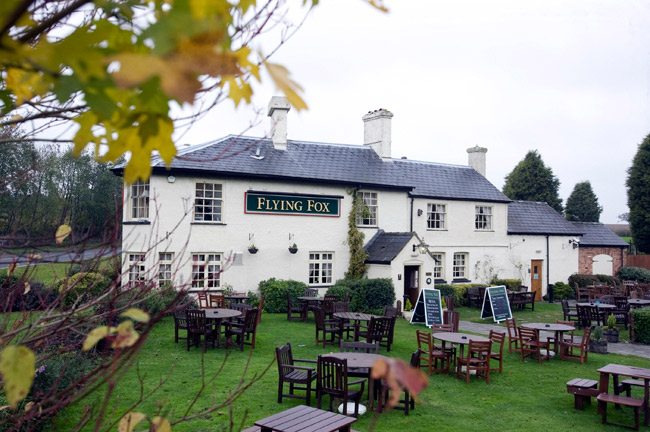 The Flying Fox - Buckinghamshire