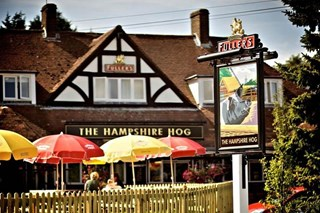 The Hampshire Hog - Hampshire
