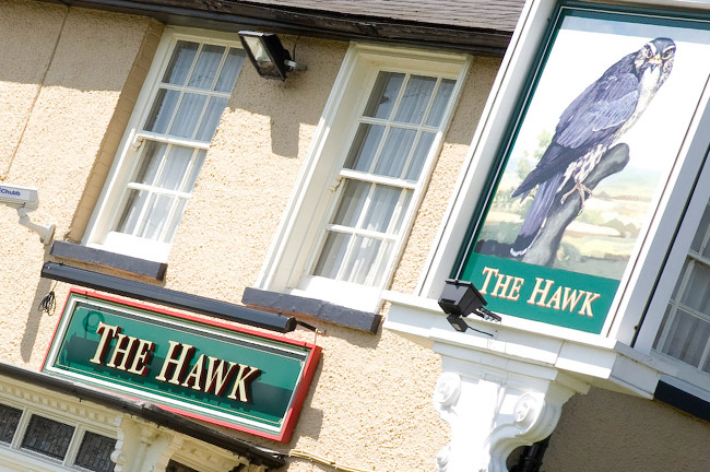 The Hawk - Essex