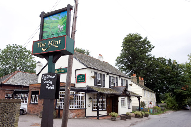 The Mint - Surrey