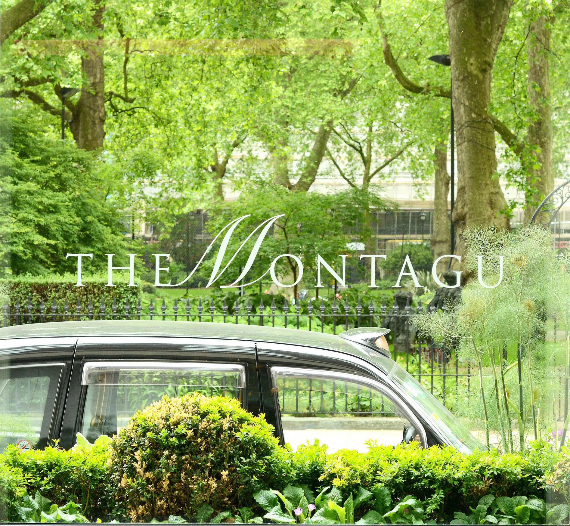 The Montagu - London