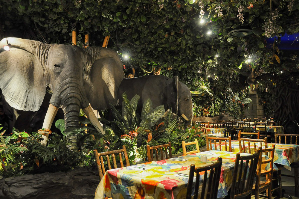 The Rainforest Cafe Piccadilly Circus Amp Haymarket