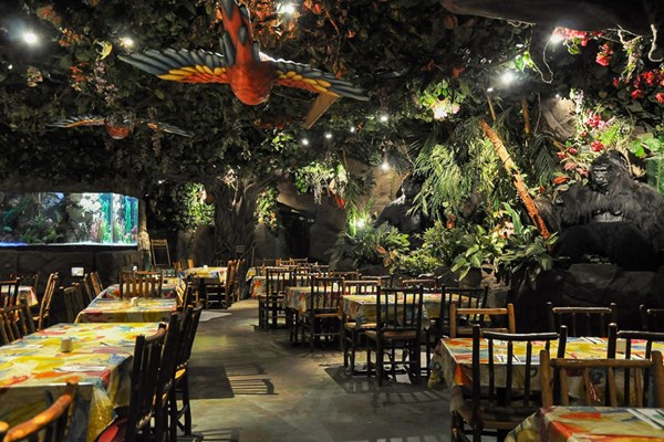 rainforest cafe niagara falls location and opening hours The Rainforest Cafe is open days a year for appetizers, lunch, dinner, dessert and drinks. Hours and wait times Location: Clifton Hill, Niagara Falls, L2G 3N5.