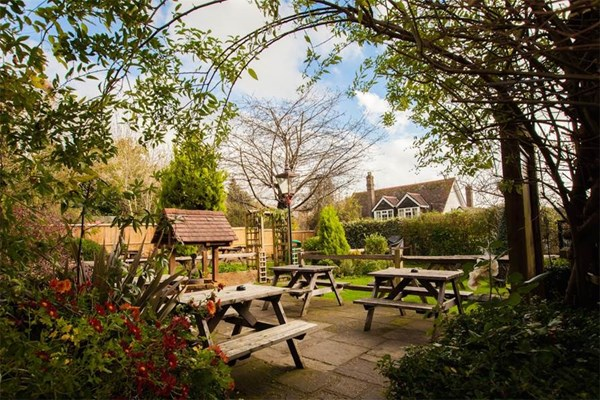 Red lion Fernhurst - Surrey