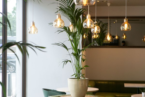 Urban Meadow Café and Bar - London