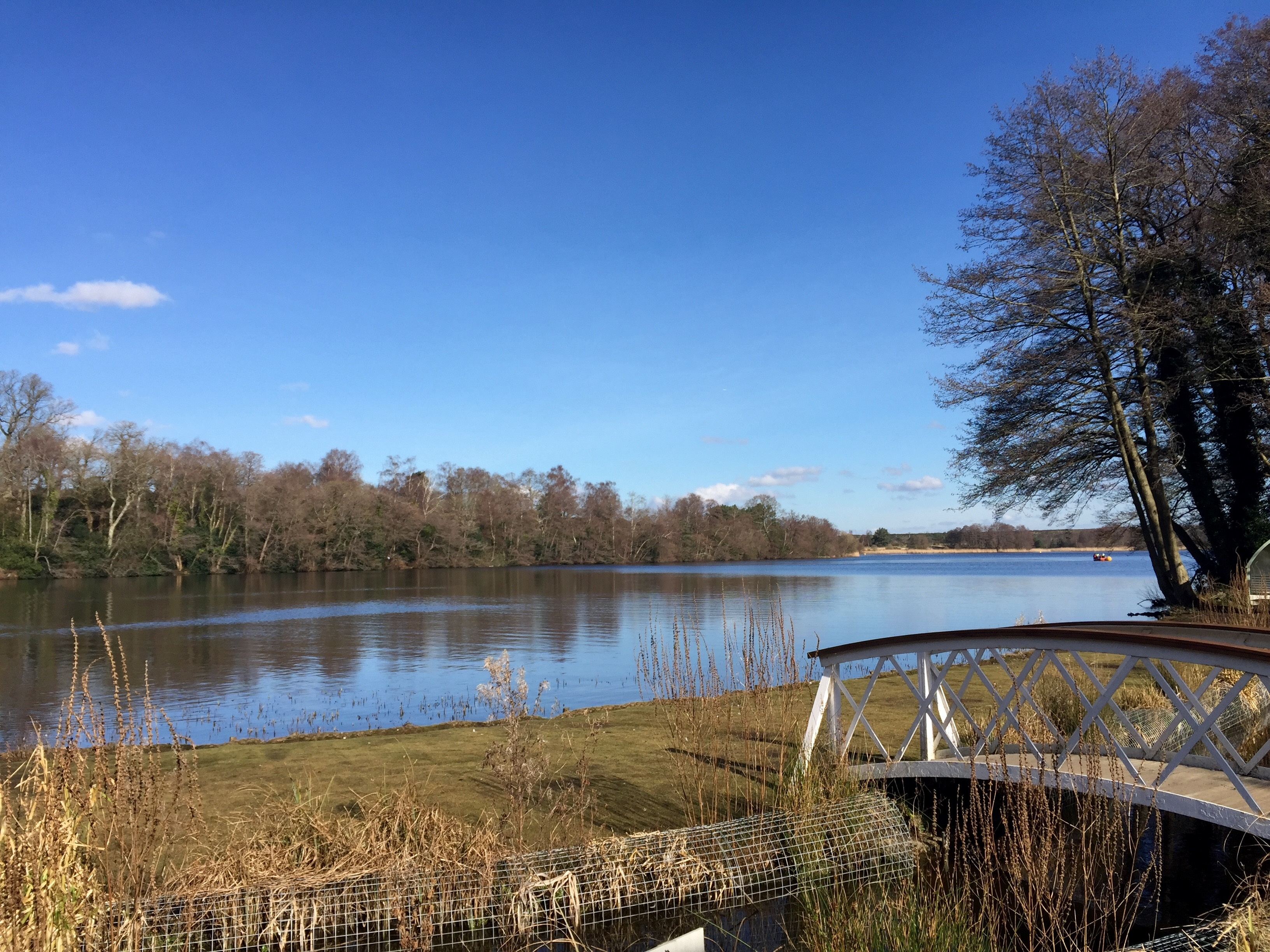 Watermark Restaurant at Frensham Pond Hotel - Surrey